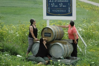 Women group visit winery